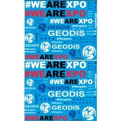 46.017 - camions geodis et XPO - 1/43 et 1/50eme
