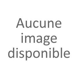 int-est87 - Renault Estafette : décos divers 1/87eme